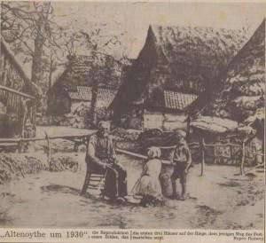 Bild (169)