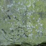 Kobrinksche Sandsteinplatte 8