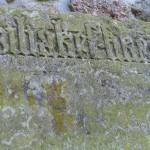 Kobrinksche Sandsteinplatte 4
