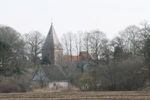 Vögel Kirche20.02.11 058