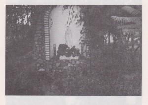 Bild (184)