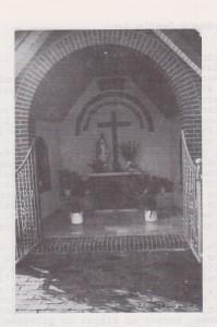 Bild (191)